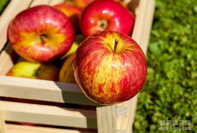 最适合孩子在秋季吃的10种水果